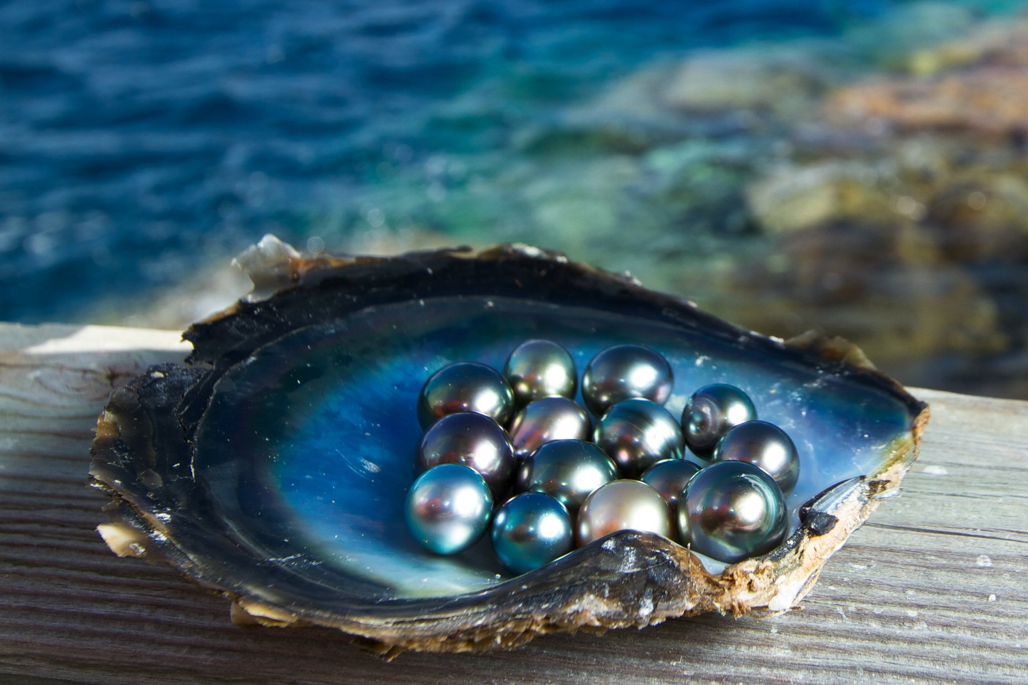 Tahitian Pearls, National Geographic